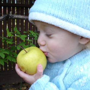 Oh, I Love Apples!